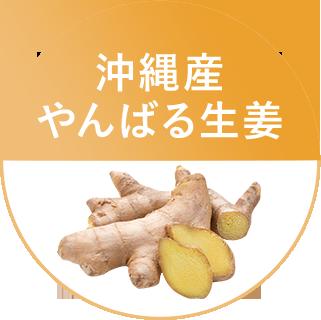 沖縄県産やんばる生姜