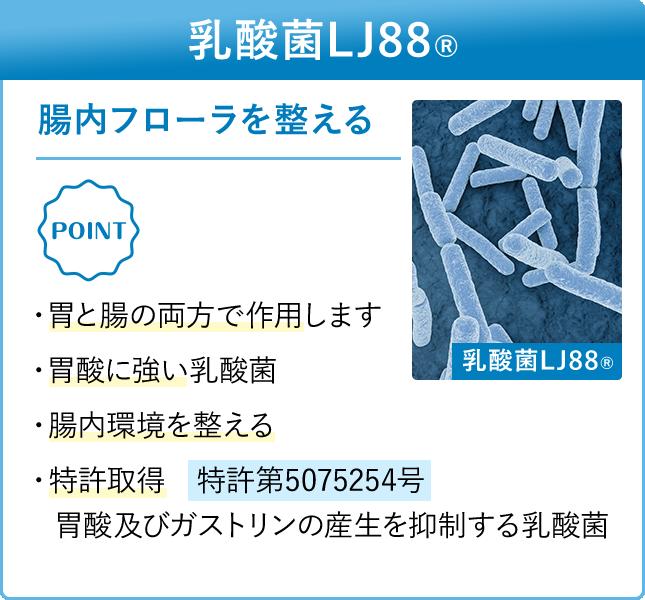 乳酸菌LJ88 腸内フローラを整える