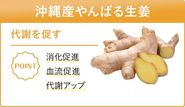 沖縄県産やんばる生姜 代謝を促す